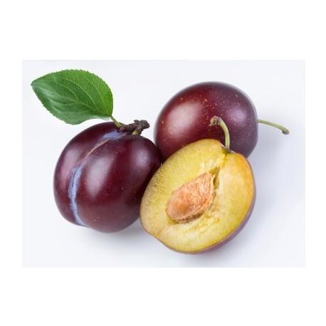 Confiture prune Madeleine