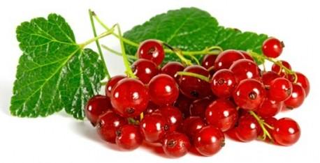 Gelée de raisinet